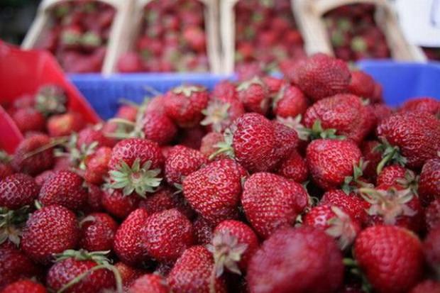 Zbyt wysokie ceny truskawek dla przemysłu