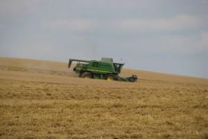 Ukraina od stycznia do października zmniejszyła produkcję rolną