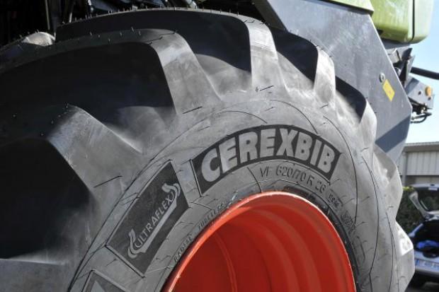 Paleta rozmiarów CerexBib coraz większa