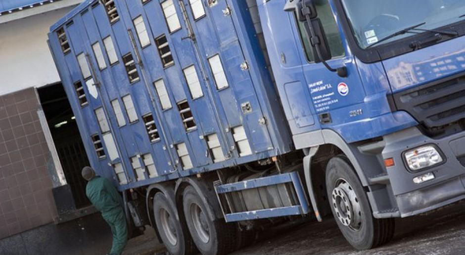 Wniosek o wprowadzenie czasowego limitu transportu zwierząt