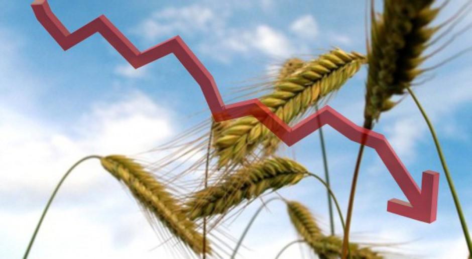Spadki cen zbóż