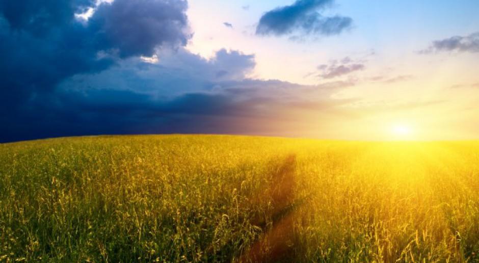 Ceny gruntów ANR nadal rosną