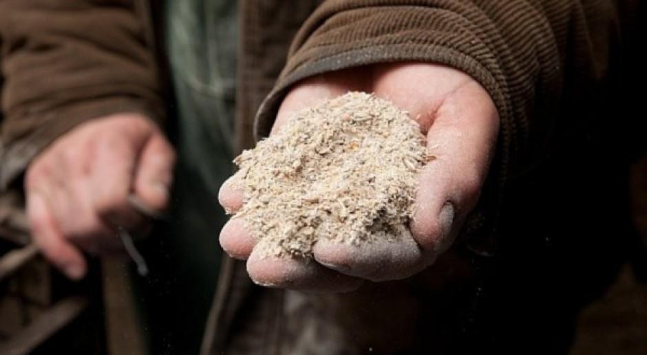 Wysokie ceny zbóż uderzą w hodowców
