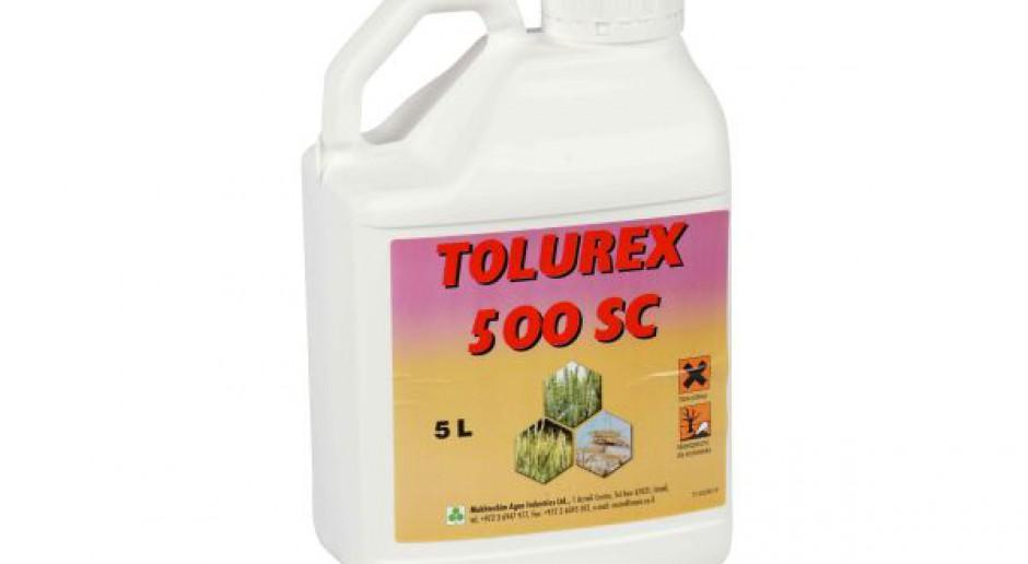Uniwersalny herbicyd do zwalczania chwastów w zbożach ozimych: Tolurex 500 SC