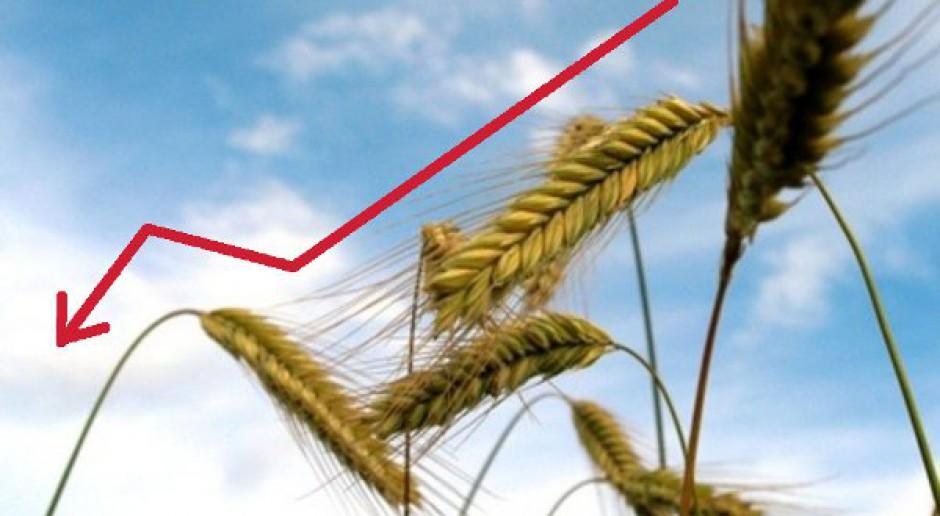 """Bardzo pilne: Po raporcie USDA """"dziwne"""" reakcje rynku"""