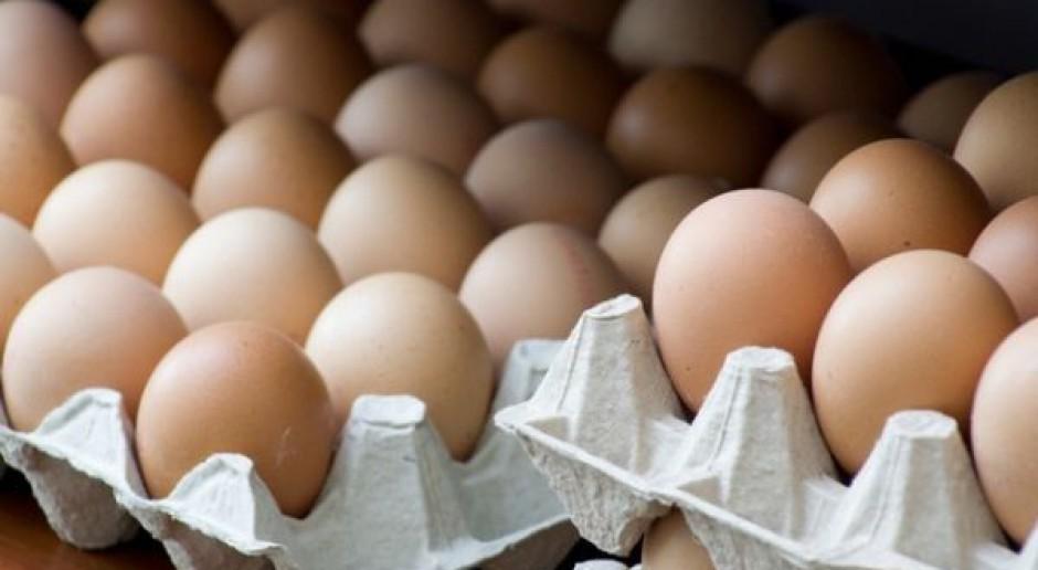 Wzrost importu jaj do UE z krajów trzecich