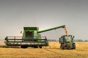 Wielkopolska: Nawet o tonę wyższe plony niż przed rokiem