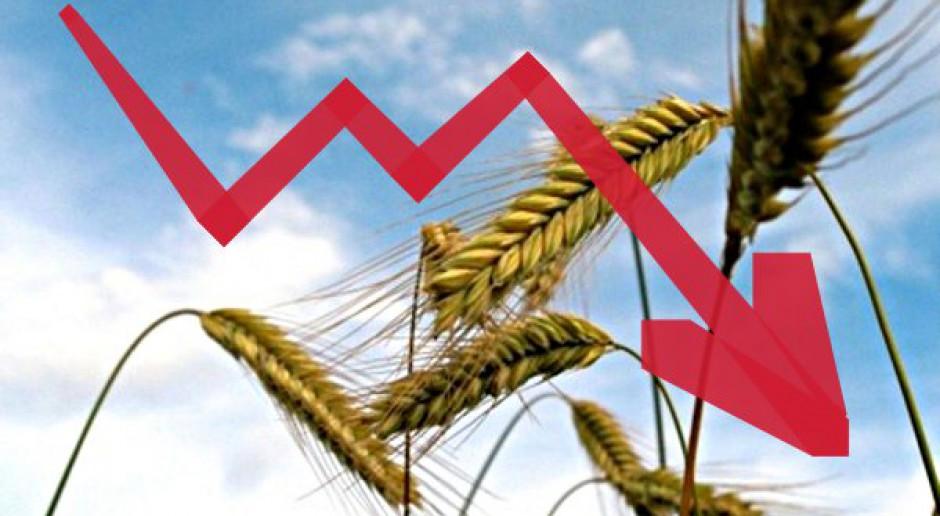 Tydzień spadków cen zbóż