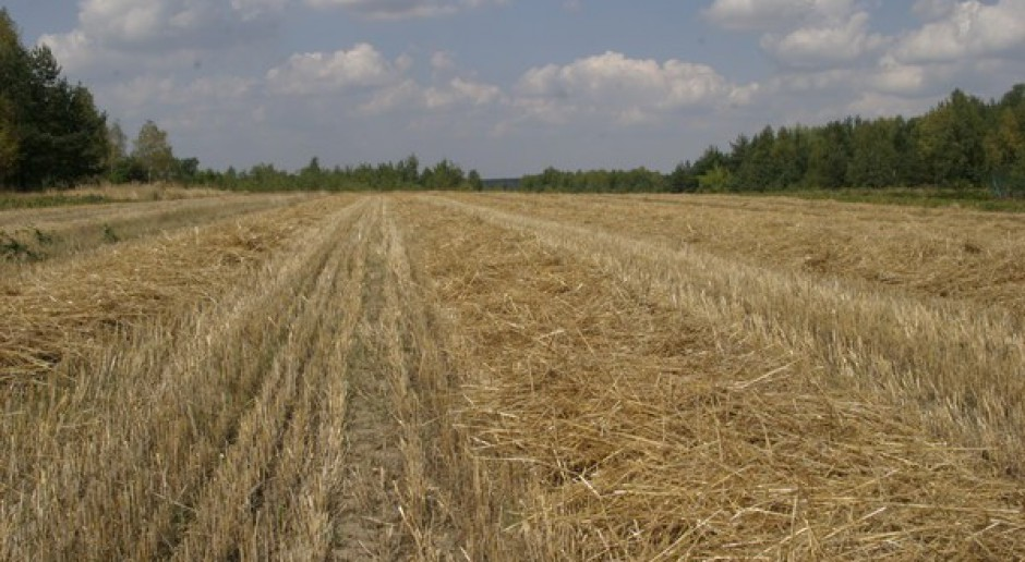 Ziemia do dzierżawy, a nie na sprzedaż