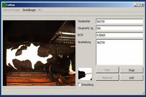 Kondycja krów w 3D