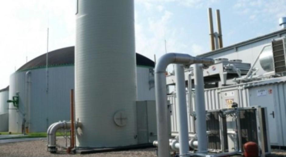 Zahamowanie rozwoju biogazowni