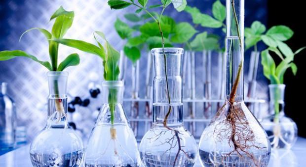 Fungicydy przyszłości