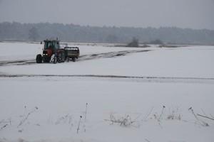 Rolnośrodowiskowe kosztem ozimin