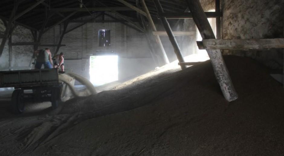 Drugi tydzień wyprzedaży zbóż