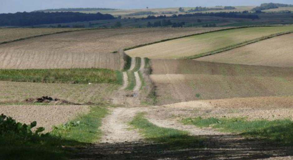Ziemia dla słupa czy dla dzierżawcy?