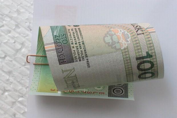 Jaka jest dynamika wypłaty dopłat bezpośrednich?