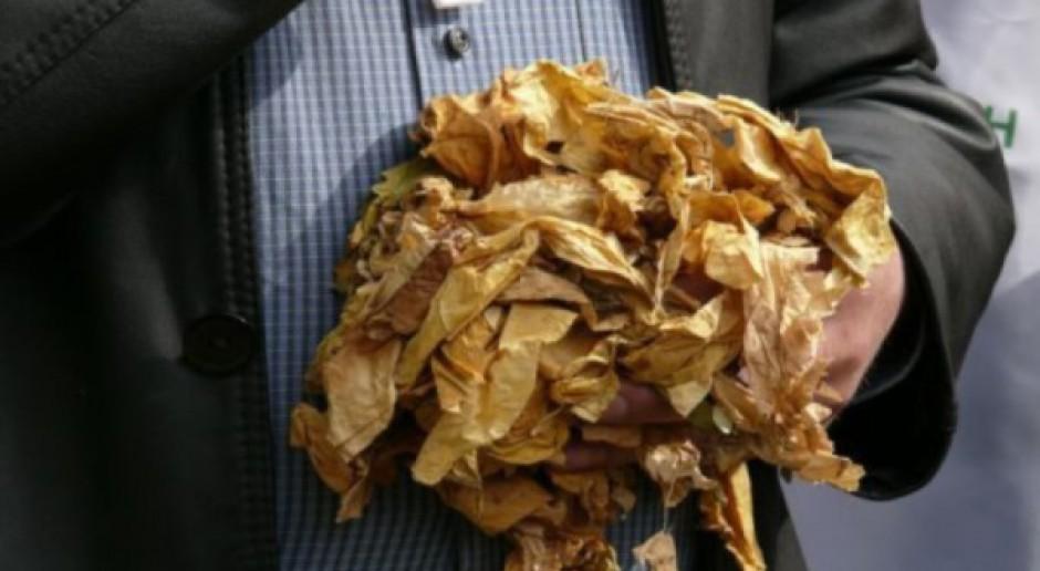 Organizacje rolnicze negatywnie o zmianach w dyrektywie tytoniowej