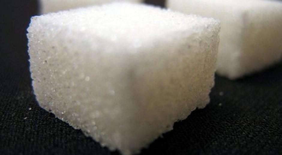 Plantatorzy zadowoleni z przedłużenia przepisów cukrowych do 2020 r.