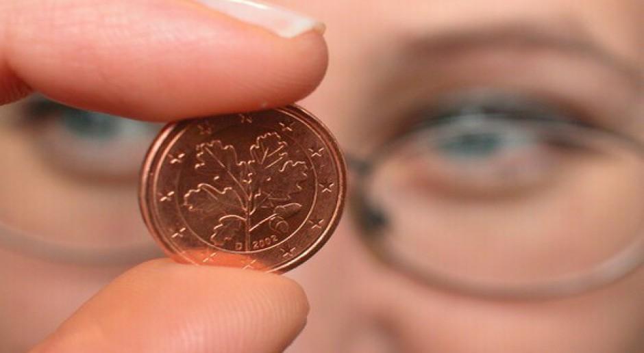 Jakie dopłaty za 2013 rok?