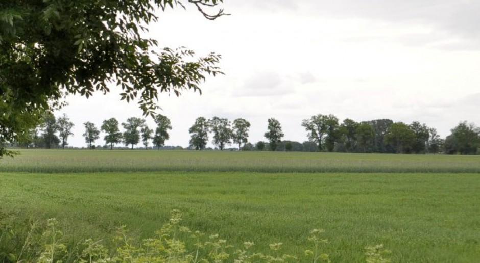 77 tys. ha z dzierżaw na sprzedaż