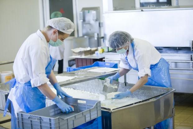 Pokazowa linia do przetworów mlecznych - dla rolników