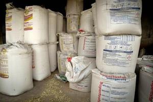 10 proc. rynku nawozów w rękach producentów z Rosji?