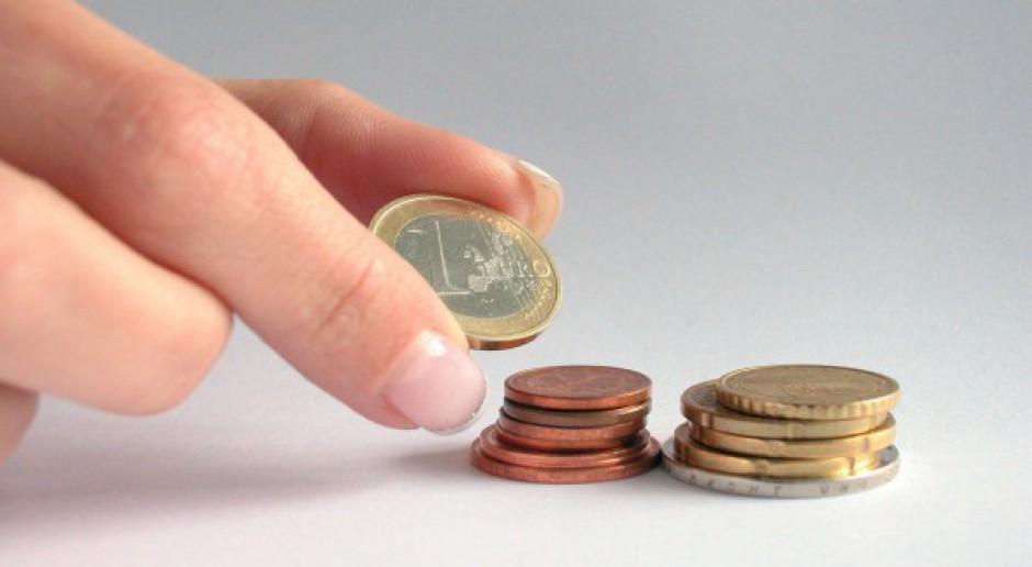 Polscy europosłowie upominają się w PE o wyrównywanie dopłat