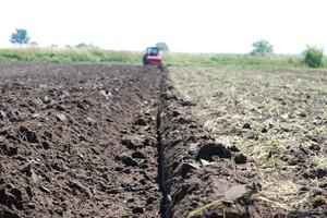 Ciolos: Innowacje w rolnictwie ważniejsze od dopłat