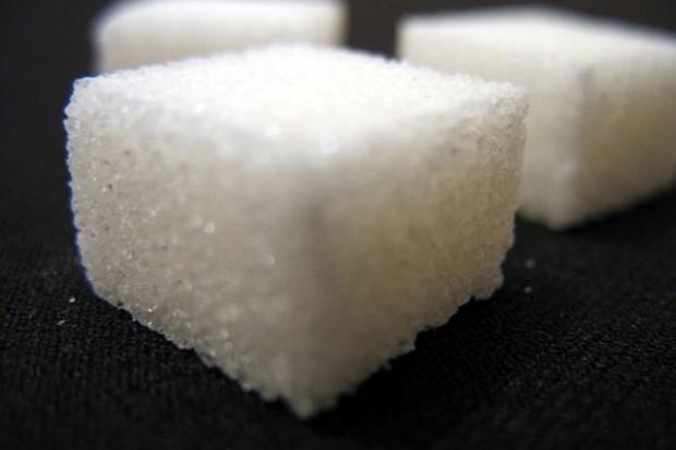 Kwoty cukrowe na razie do 2017 r.