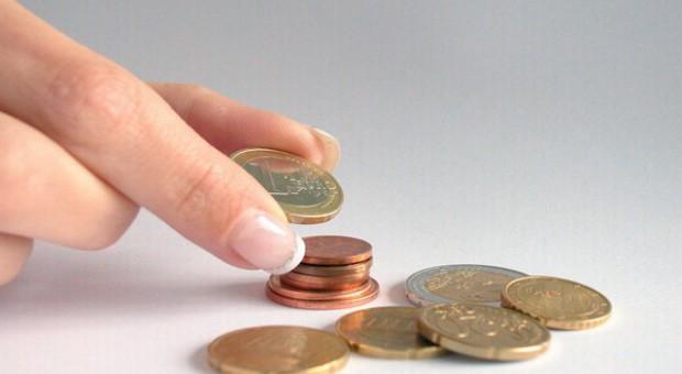 Dopłaty rolne powyżej 5 tys. euro mogą być niższe o 5 proc. w 2013 r.