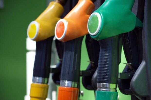 Czy sytuacja na rynku biopaliw odbije się na cenach rzepaku?