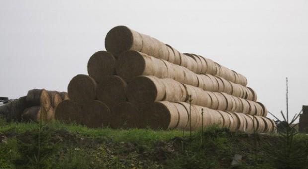 Paliwa alternatywne przestały być potrzebne?