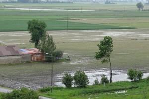 Na Mazowszu nadal są zastoiska wody