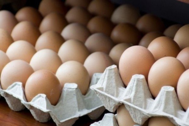 Odbudowa produkcji jaj w Polsce bardzo wolna