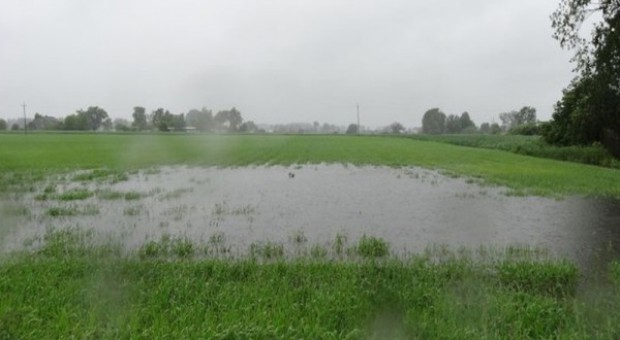 100 tys. gospodarstw poszkodowanych wskutek trudnej pogody