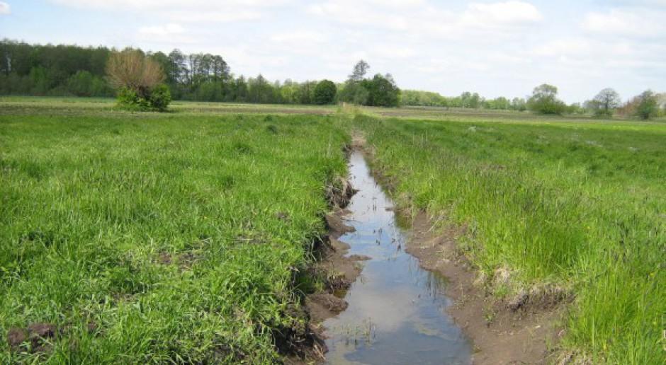 Kosztowna dla rolników walka z zanieczyszczeniem wód azotanami?