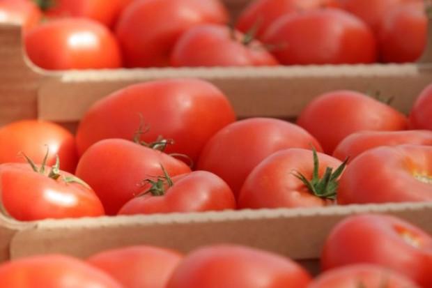Warzywny fungicyd zarejestrowany