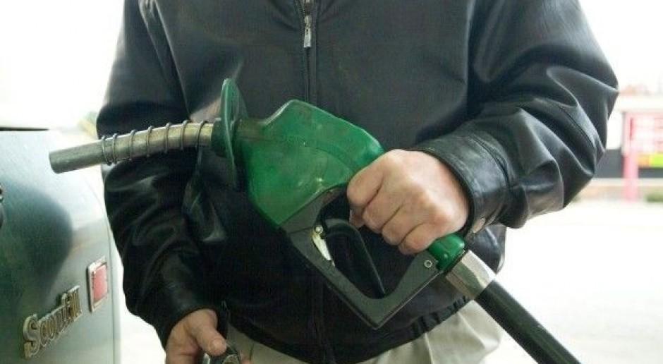 Decyzja w sprawie biopaliw nie wcześniej niż w 2014 r.