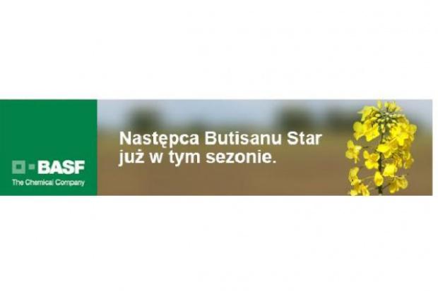 Następca Butisanu Star już w tym sezonie