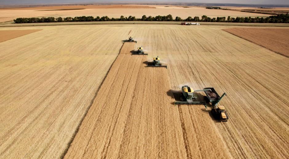 KE: W 2013 wyższe zbiory zbóż niż w roku ubiegłym