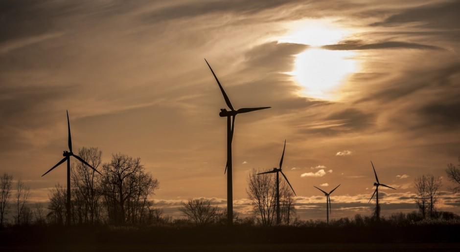 10 mln euro na polską farmę wiatrową