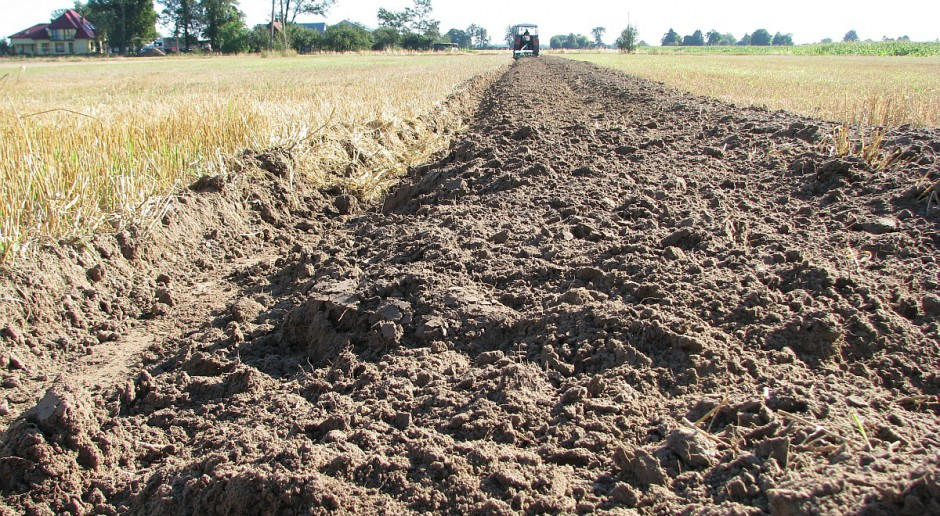 Zbadaj swoją glebę