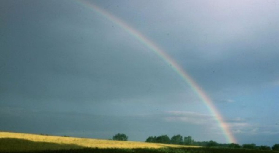 IUNG: W miarę korzystna pogoda dla upraw