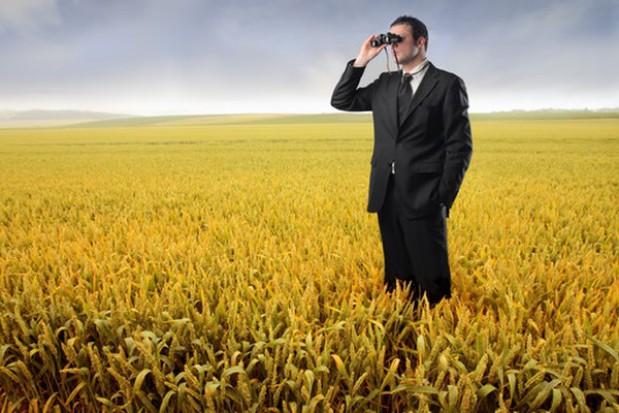 Dalsza przecena surowców rolnych