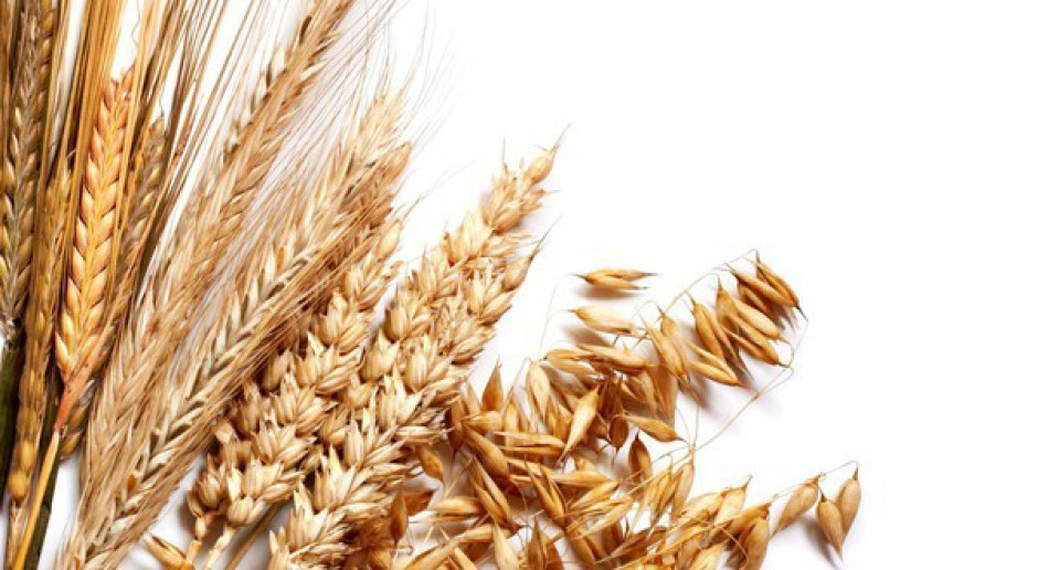 Apelują o niesprzedawanie ziarna w skupach
