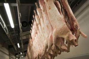Od końca maja 2013 r. ceny świń mocno rosną