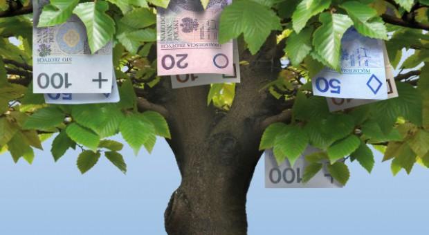 Krajowy rejestr uwzględni odmiany bez badań OWT jeszcze przez rok