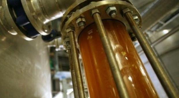 Biopaliwa stabilizują sytuację na rynku rzepaku – jeszcze