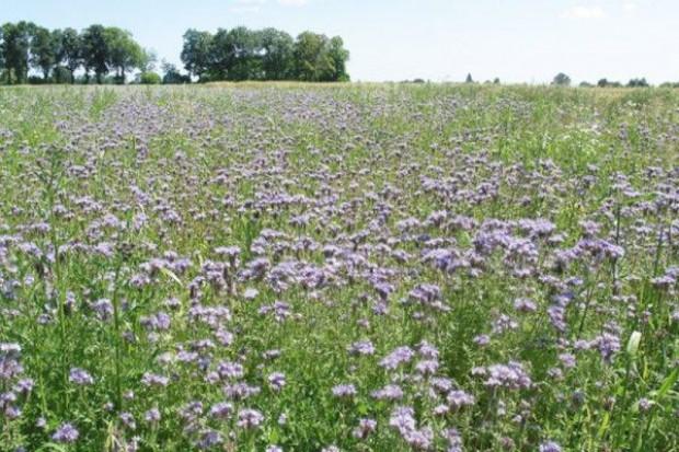 Do 30 września zmiany w programie rolnośrodowiskowym