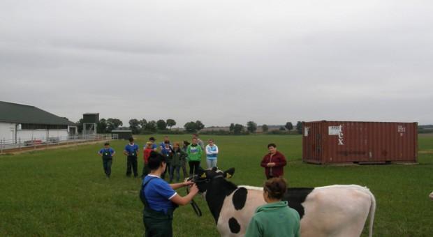 Warsztaty młodych hodowców bydła